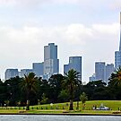 Albert Park Lake to Melbourne CBD by Joanna Beilby