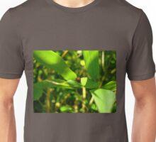 Bamboo Ladybug Unisex T-Shirt