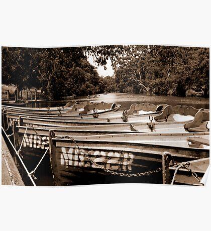Yarra Bend - the boatshed #1 Poster