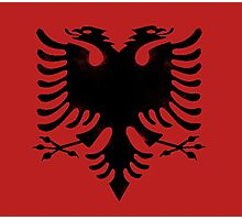 red and black eagle  Photographic Print