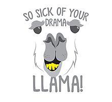 So sick of your DRAMA LLAMA!  Photographic Print