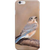 Blue Bird iPhone Case/Skin