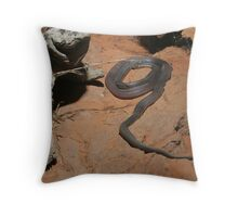 Black snake, Australia Throw Pillow