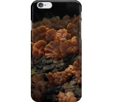 Moment of glory iPhone Case/Skin