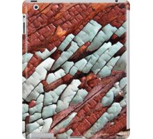 Dry Ice iPad Case/Skin