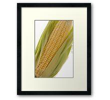 Corn Framed Print