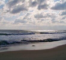 Shimmering Seas by Dandelion Dilluvio