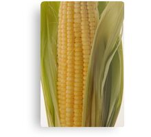Corn Metal Print