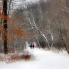 A Winter Walk by Elaine  Manley