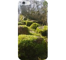 Moss On The Wall iPhone Case/Skin