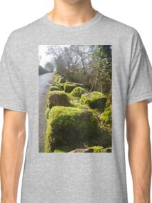 Moss On The Wall Classic T-Shirt