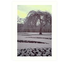 Infrared winter willow, Edinburgh Art Print