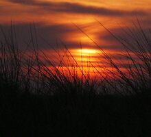 walney sunfall by kip13