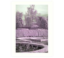 Alice's garden Art Print
