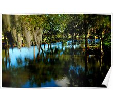 Live Oaks and Spanish Moss--NOLA Poster