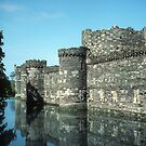 Beaumaris Castle, outer wall and moat by nealbarnett