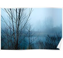Foggy river bank Poster