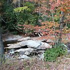 Mountain stream in fall, North Carolina by nealbarnett