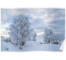 Winter Wonderland, Glencoe Poster