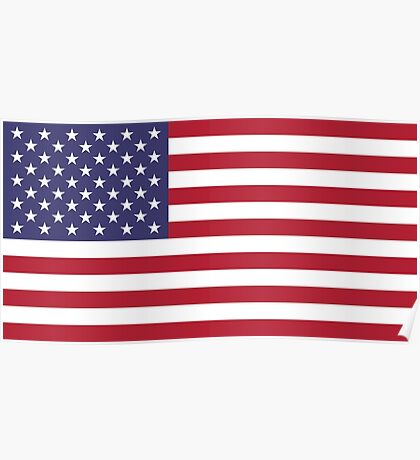 """The national flag of the United States of America -  Authentic 10:19 """"G-spec"""" (for """"government specification"""" ) Scale and colors Poster"""