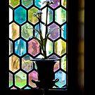 Window Display by deahna