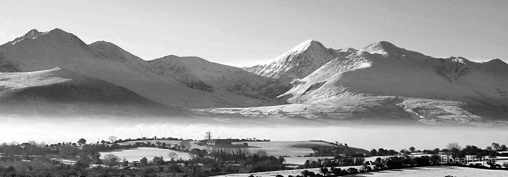 The Reeks by Donal Lyne