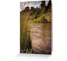 Jamieson - Goulburn River Greeting Card