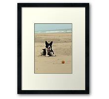 Baxter and the Ball Framed Print