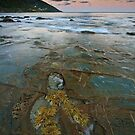 Pavement at Wye River by Jared Revell