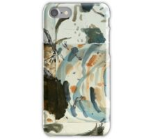 dry creek bed - Maranoa iPhone Case/Skin