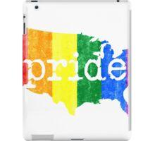 AMERICA USA GAY MARRIAGE PRIDE MAP VINTAGE iPad Case/Skin