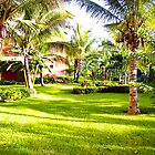 Tropical Resort by tammykayphoto
