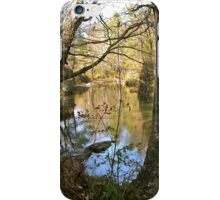 River and old bridge abutment 2 iPhone Case/Skin