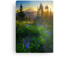 Mount Rainier Sunburst Metal Print