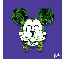 Mouse Kush Head Photographic Print