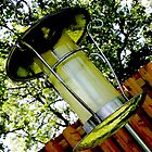 Birdfeeder in the Backyard by bigjason56
