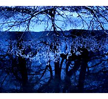 Winter Reflection Photographic Print