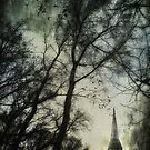 The Spire by Nicola Smith