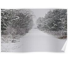 Wintry Path Poster