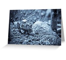 Dwarf Lost In The Enchanted Forest Greeting Card