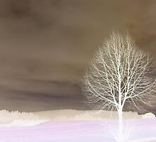 Abstract Tree  by ©The Creative  Minds