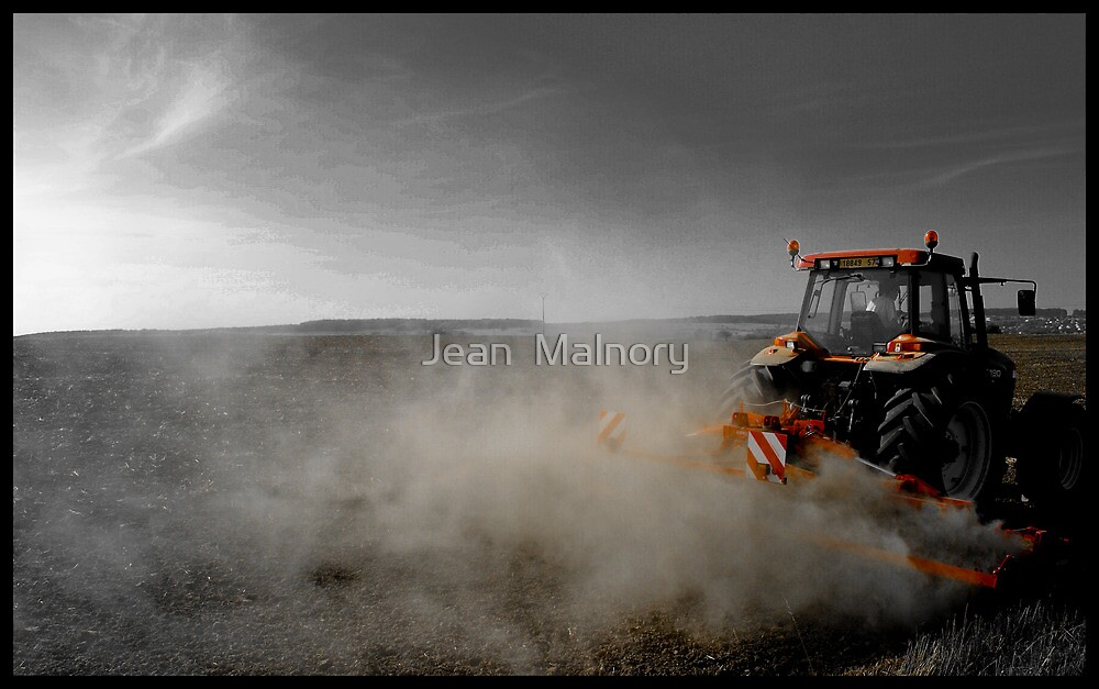 The farmer by Jean  Malnory