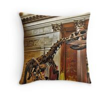 American Museum of Natural History Throw Pillow
