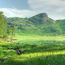 Mountain Meadow by a Green Tarn by VoluntaryRanger