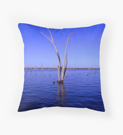 Soaking Dry Throw Pillow