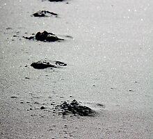 Footsteps by nefetiti