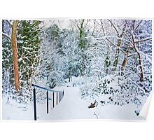 Steps in the Snow Poster