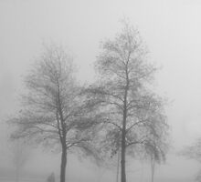 The man in the fog by Agnes McGuinness