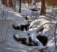 Snowy Stream by Jane Best