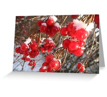 Berry Happy Morning Greeting Card